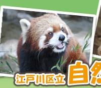 江戸川区立自然動物園