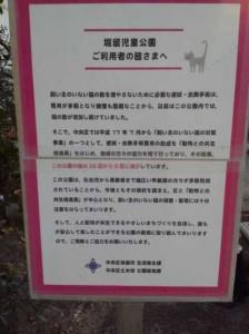 堀留地域猫活動
